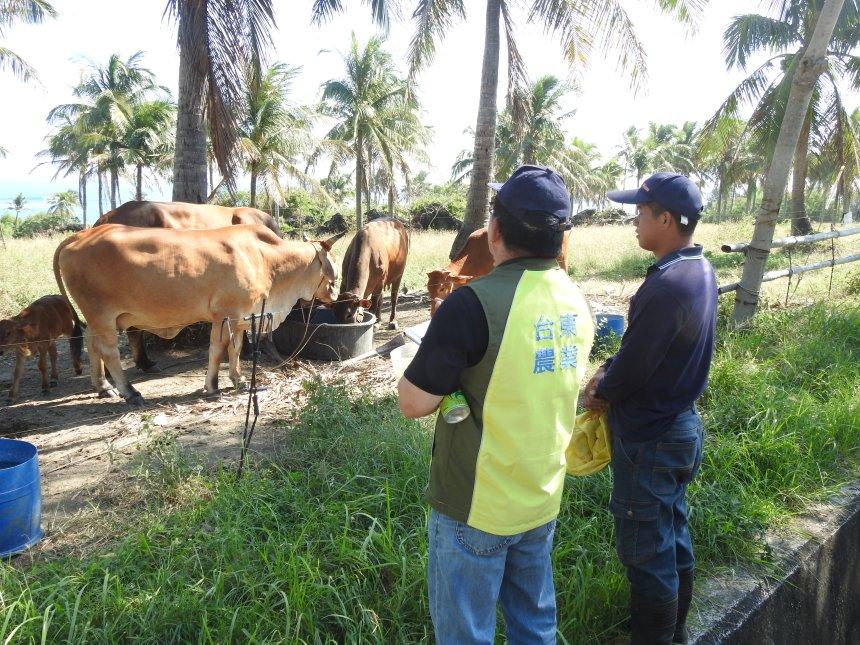 DSCN8100農業