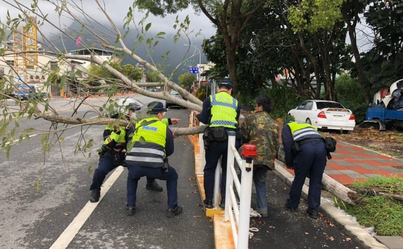 大雨來襲市區路樹傾倒 花蓮警速排除
